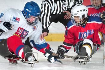 Česká sledge hokejová asociace